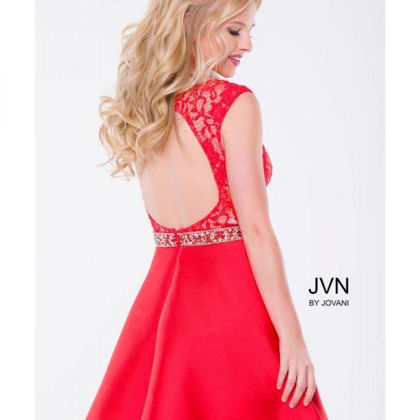JVN41672-Red_back